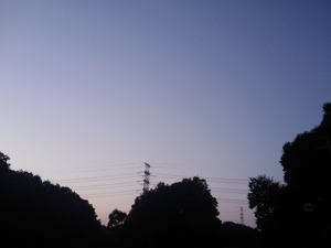 Image_007_2